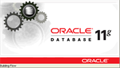 Oracle_DB_11gR2_Win32_Windows2003-01_R